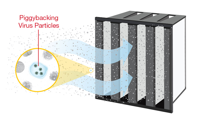 Piggyback virus Particles Air FIlter