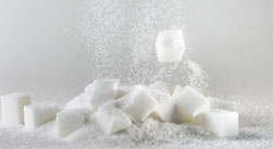 sugar production case study